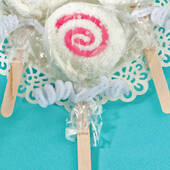 Perfectly Plain Collection Lollipop Towel Favors