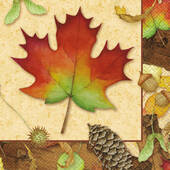 Autumn Leaves Lunch Napkins