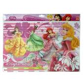 Disney Princess Table Placemats