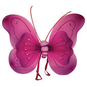 Fuchsia Butterfly Wings