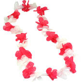 Pink And White Flower Lei